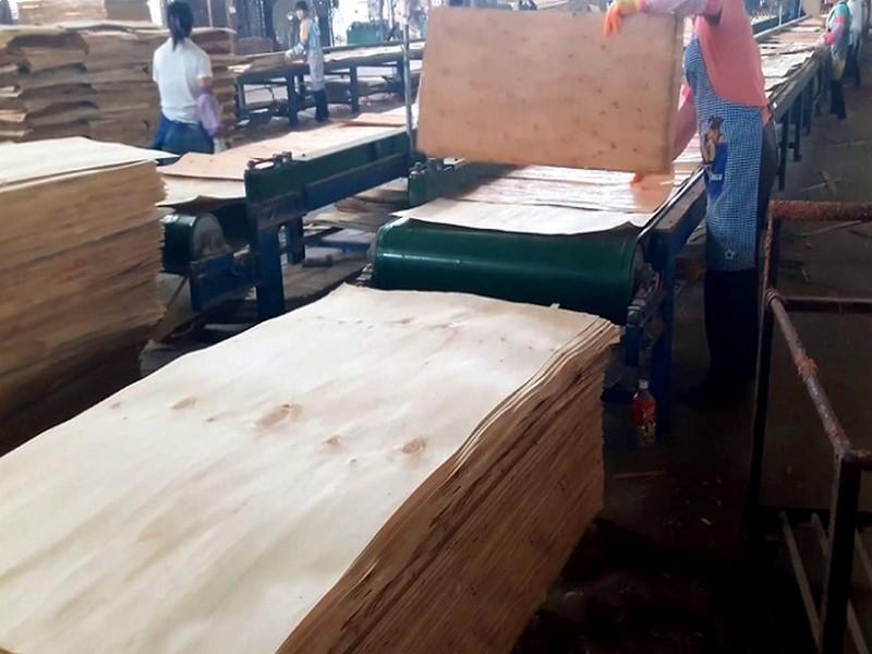 Có 3 phương pháp sản xuất ván veneer thông dụng: lạng tròn, lạng thẳng và lạng phần tư.